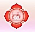 Yantra 1er chakra Muladhara